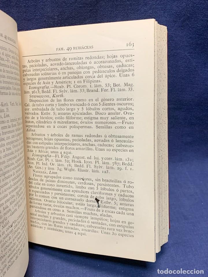 Libros antiguos: LIBRO GENEROS PLANTAS LEÑOSAS DE FILIPINAS SEBASTIAN VIDAL Y SOLER 1883 FIRMADO 22X16CMS - Foto 8 - 281035433