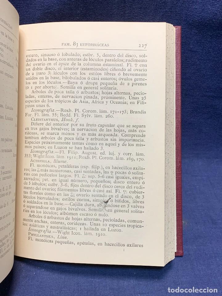 Libros antiguos: LIBRO GENEROS PLANTAS LEÑOSAS DE FILIPINAS SEBASTIAN VIDAL Y SOLER 1883 FIRMADO 22X16CMS - Foto 11 - 281035433