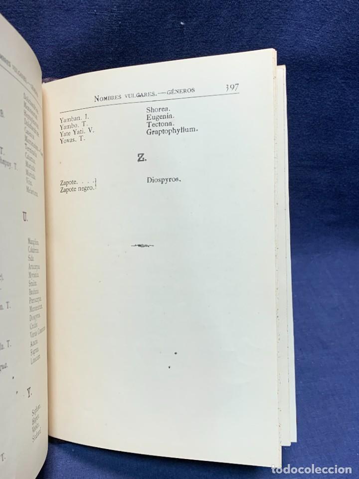 Libros antiguos: LIBRO GENEROS PLANTAS LEÑOSAS DE FILIPINAS SEBASTIAN VIDAL Y SOLER 1883 FIRMADO 22X16CMS - Foto 14 - 281035433