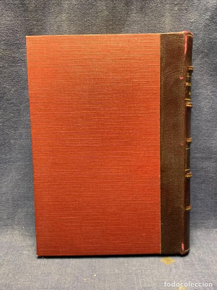 Libros antiguos: LIBRO GENEROS PLANTAS LEÑOSAS DE FILIPINAS SEBASTIAN VIDAL Y SOLER 1883 FIRMADO 22X16CMS - Foto 17 - 281035433