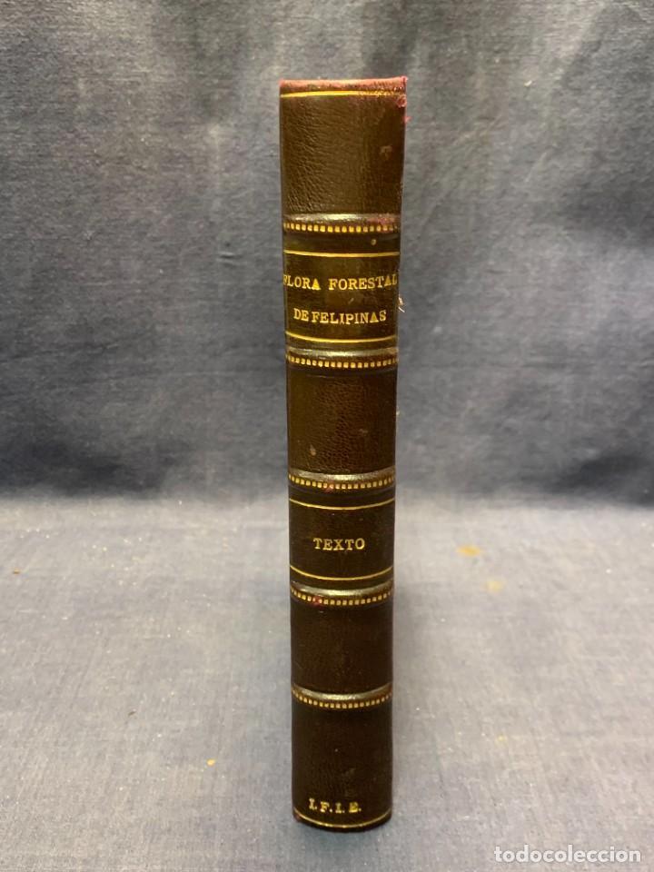 Libros antiguos: LIBRO GENEROS PLANTAS LEÑOSAS DE FILIPINAS SEBASTIAN VIDAL Y SOLER 1883 FIRMADO 22X16CMS - Foto 18 - 281035433