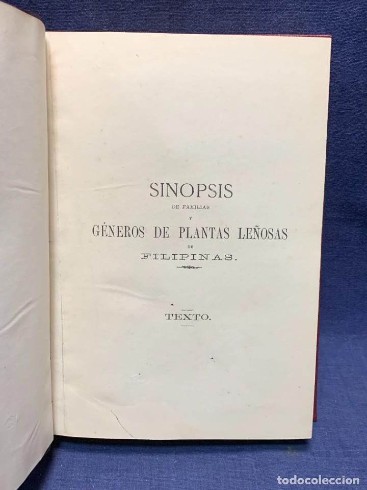 Libros antiguos: LIBRO GENEROS PLANTAS LEÑOSAS DE FILIPINAS SEBASTIAN VIDAL Y SOLER 1883 FIRMADO 22X16CMS - Foto 20 - 281035433