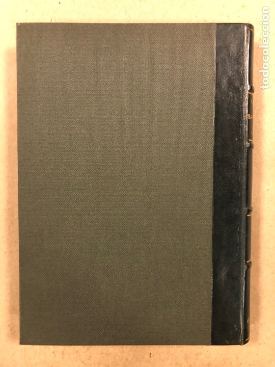 Libros antiguos: EXPLORACIÓN DE LA CAVERNA DE SANTIMAMIÑE. TELESFORO DE ARANZADI, J.M. BARANDIARAN Y ENRIQUE DE EGURE - Foto 16 - 285289668