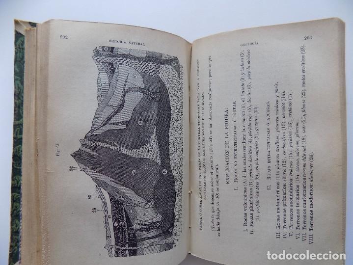 Libros antiguos: LIBRERIA GHOTICA. FELIX SANCHEZ. ELEMENTOS DE HISTORIA NATURAL.1882. / ELEMENTOS FISIOLOGIA.GRABADOS - Foto 7 - 288035903