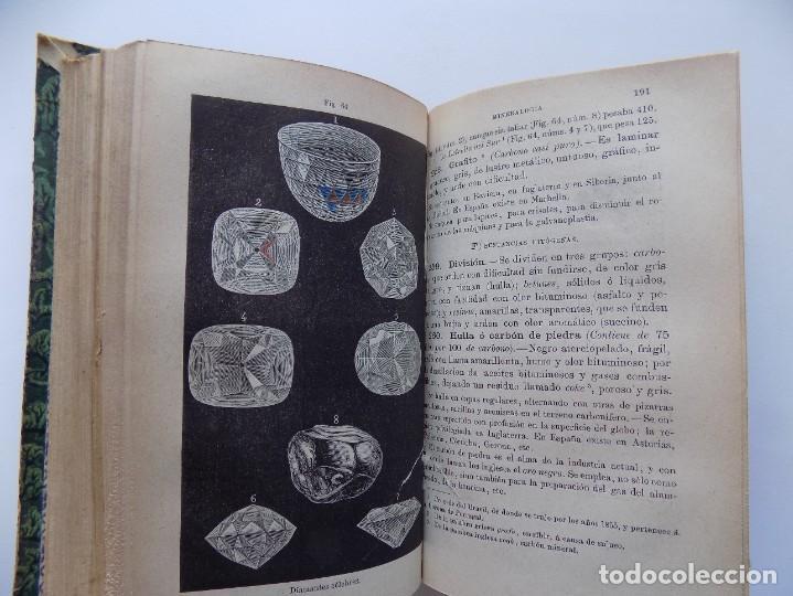 Libros antiguos: LIBRERIA GHOTICA. FELIX SANCHEZ. ELEMENTOS DE HISTORIA NATURAL.1882. / ELEMENTOS FISIOLOGIA.GRABADOS - Foto 8 - 288035903