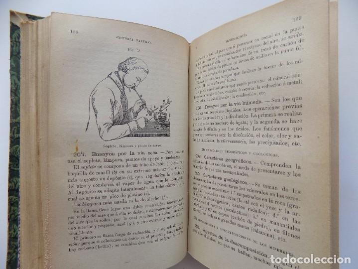 Libros antiguos: LIBRERIA GHOTICA. FELIX SANCHEZ. ELEMENTOS DE HISTORIA NATURAL.1882. / ELEMENTOS FISIOLOGIA.GRABADOS - Foto 9 - 288035903