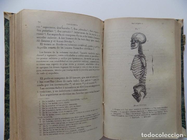 Libros antiguos: LIBRERIA GHOTICA. FELIX SANCHEZ. ELEMENTOS DE HISTORIA NATURAL.1882. / ELEMENTOS FISIOLOGIA.GRABADOS - Foto 12 - 288035903