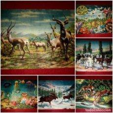 Libros antiguos: COLECCIÓN COMPLETA 8 ALBUMES ANIMALES EN LA NATURALEZA EDICIONES KOALA. Lote 289504928