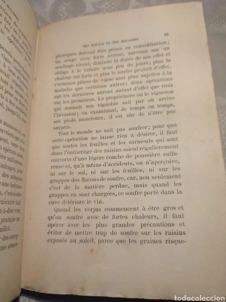 Libros antiguos: Manuel pratique de la culture de la vigne Armando Cazenave (Manual cultivo viña) - Foto 2 - 289686383