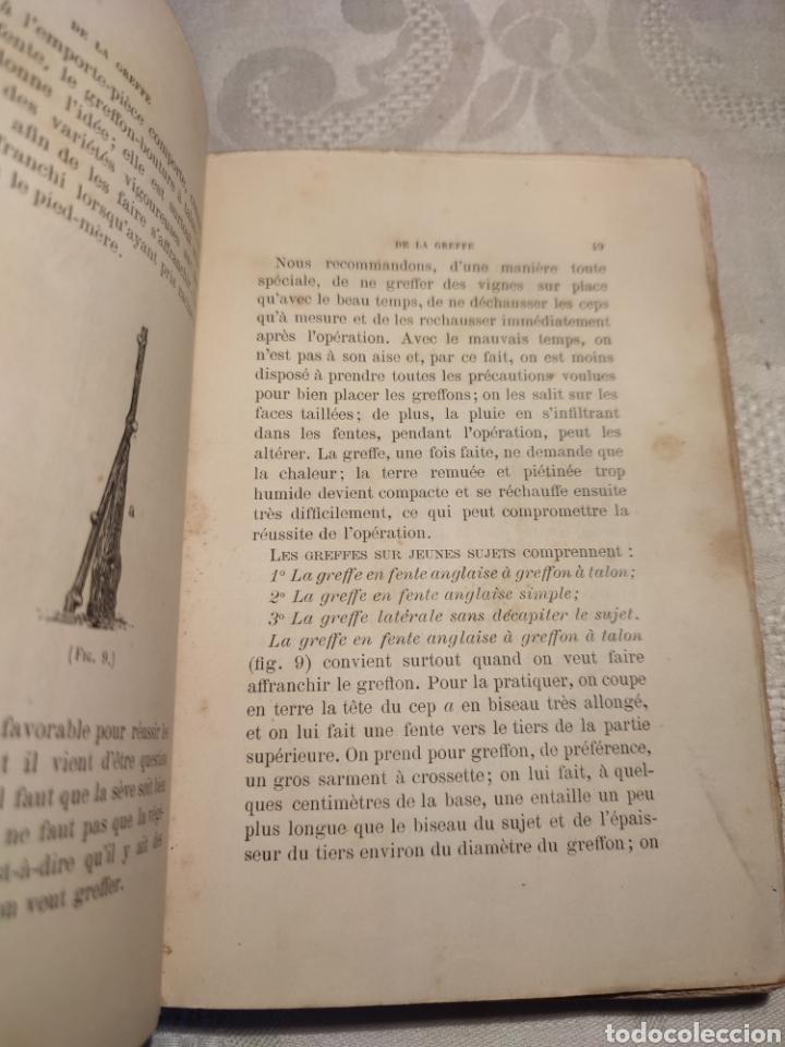 Libros antiguos: Manuel pratique de la culture de la vigne Armando Cazenave (Manual cultivo viña) - Foto 3 - 289686383