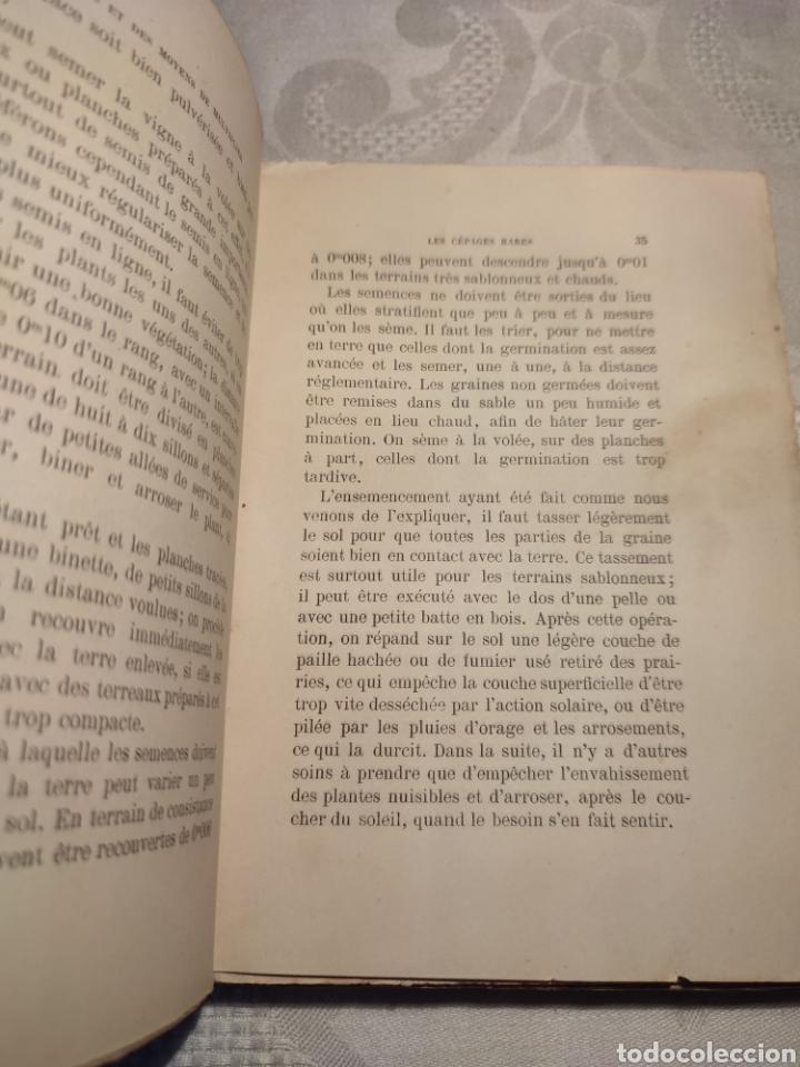 Libros antiguos: Manuel pratique de la culture de la vigne Armando Cazenave (Manual cultivo viña) - Foto 4 - 289686383
