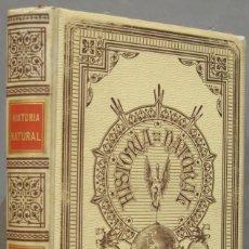Libros antiguos: 1891.- ANTROPOLOGIA. MONTANER Y SIMON. TOMO I. Lote 293702183
