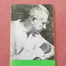 Libros antiguos: HOMENAJE A NICHOLAS RAY - JOSÉ LUIS GUARNER - XXI FESTIVAL DE CINE DE SAN SEBATIÁN - 1974. Lote 178245927