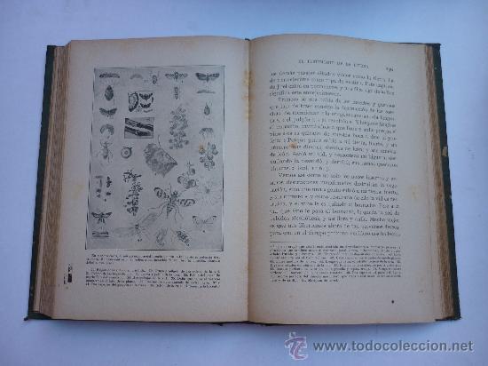 Libros antiguos: HERALDOS DEL PORVENIR - POR ASA OSCAR TAIT - 1919 - SOCIEDAD INTERNACIONAL DE TRATADOS. - Foto 2 - 25178464