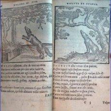 Libros antiguos: AÑO 1573: LIBRO DE FÁBULAS, ILUSTRADO, DEL SIGLO XVI. MINIATURA.. Lote 193671945