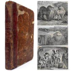 Libros antiguos: 1849 - LAS FÁBULAS DE ESOPO ILUSTRADAS CON GRABADOS - RARA EDICIÓN IMPRESA EN MÁLAGA. Lote 218731381