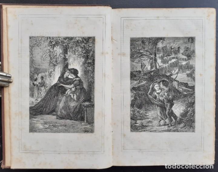 Libros antiguos: 1875 - Bernardino de Saint-Pierre: Pablo y Virginia + Novelas de Gustavo Aimard - Grabados - Piel - Foto 8 - 263229370