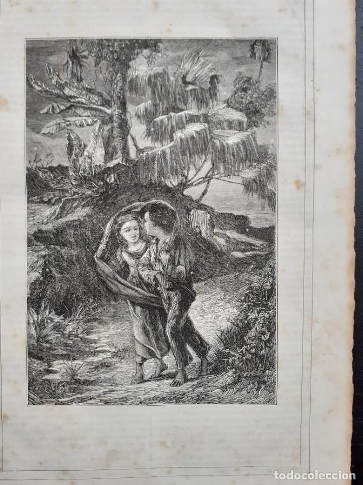 Libros antiguos: 1875 - Bernardino de Saint-Pierre: Pablo y Virginia + Novelas de Gustavo Aimard - Grabados - Piel - Foto 10 - 263229370