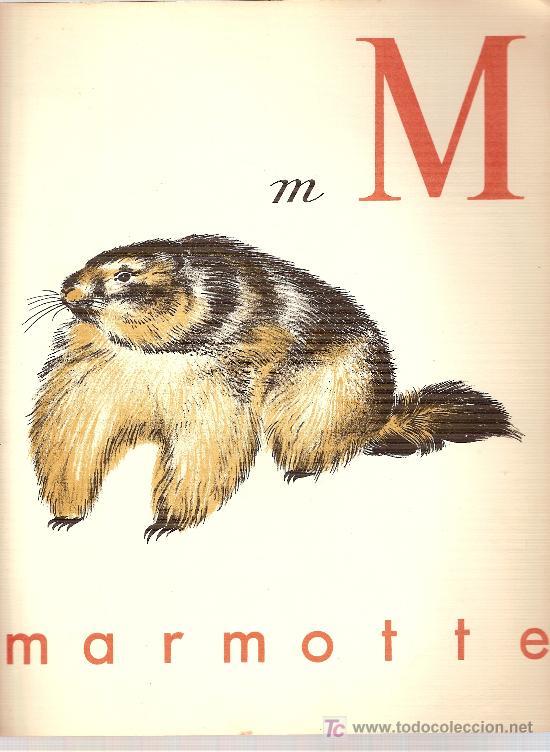 Libros antiguos: ABC du Pere Castor / Dessins de Rojan. Paris : Flammarion, 1936. 28 x 24 cm. 24 p. - Foto 2 - 26008143