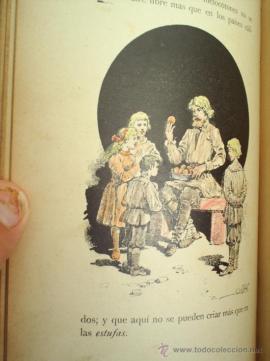 Libros antiguos: CUENTOS CORTOS-hijos de santiago rodrigez -burgos - Foto 3 - 26473925