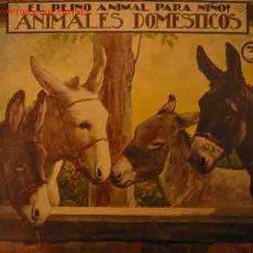 Libros antiguos: ANIMALES DOMESTICOS, 3. Lote 23275913