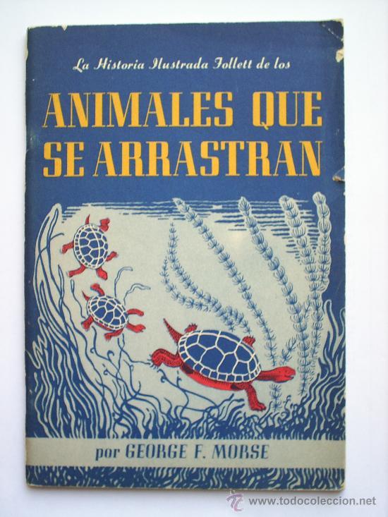 LA HISTORIA ILUSTRADA , ANIMALES QUE SE ARRASTRAN , REPTILES DE NORTE AMERICA , 1945 (Libros Antiguos, Raros y Curiosos - Literatura Infantil y Juvenil - Cuentos)