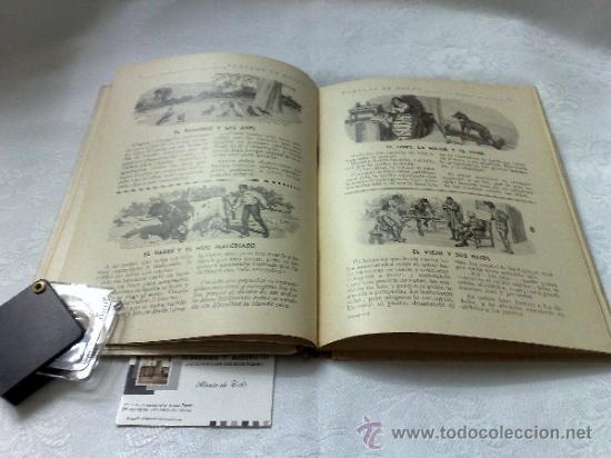 Libros antiguos: AÑO 1943- RAMON SOPENA.- BIBLIOTECA PARA NIÑOS.-FÁBULAS DE ESOPO. - Foto 5 - 33214138