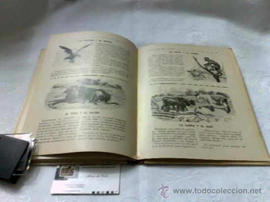 Libros antiguos: AÑO 1943- RAMON SOPENA.- BIBLIOTECA PARA NIÑOS.-FÁBULAS DE ESOPO. - Foto 4 - 33214138