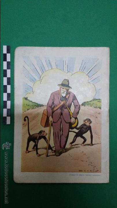 Libros antiguos: 3 cuentos ilustrados para niños, editorial Ramon Sopena. - Foto 7 - 47540260