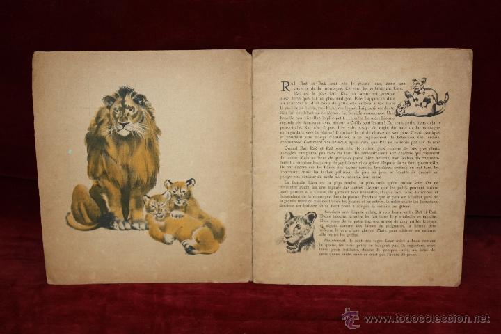 Libros antiguos: Albums du Père Castor. Les petits et Les grands. Editeur Flammarion. año 1933 - Foto 5 - 50436062
