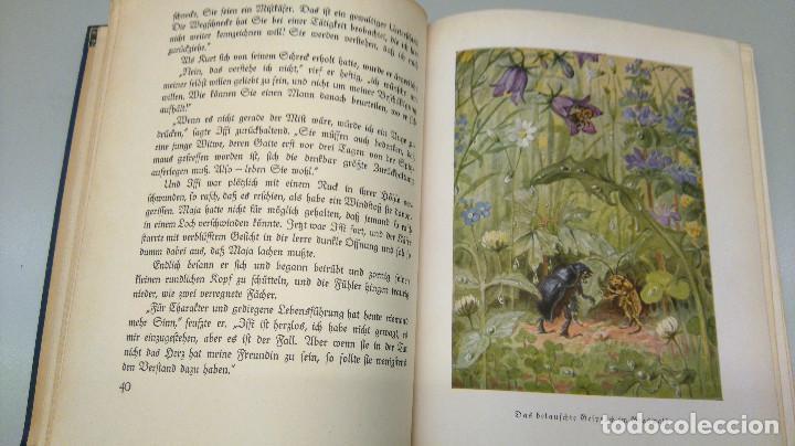 Libros antiguos: CUENTO INFANTIL,LA ABEJA MAYA,PRIMERA EDICION MUNDIAL,AÑO 1912,EDITADO EN ALEMANIA,DIE BIENE MAJA. - Foto 6 - 64594879