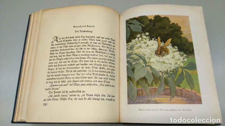 Libros antiguos: CUENTO INFANTIL,LA ABEJA MAYA,PRIMERA EDICION MUNDIAL,AÑO 1912,EDITADO EN ALEMANIA,DIE BIENE MAJA. - Foto 9 - 64594879