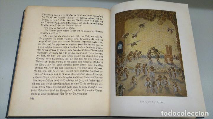Libros antiguos: CUENTO INFANTIL,LA ABEJA MAYA,PRIMERA EDICION MUNDIAL,AÑO 1912,EDITADO EN ALEMANIA,DIE BIENE MAJA. - Foto 11 - 64594879