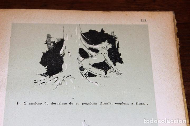 Libros antiguos: Cuentos vivos ilustrados por Apeles Mestres 1929 ( libros ilustrados infantiles) Apel·les Mestres - Foto 7 - 74717331