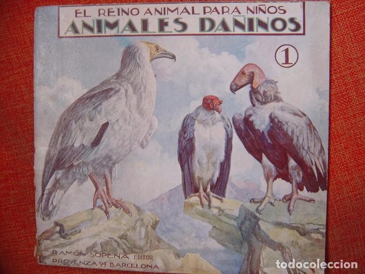 EL REINO ANIMAL PARA NIÑOS ANIMALES DAÑINOS Nº1 (Libros Antiguos, Raros y Curiosos - Literatura Infantil y Juvenil - Cuentos)