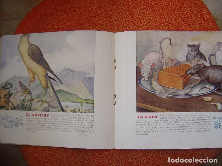 Libros antiguos: EL REINO ANIMAL PARA NIÑOS ANIMALES DAÑINOS Nº1 - Foto 4 - 77790581