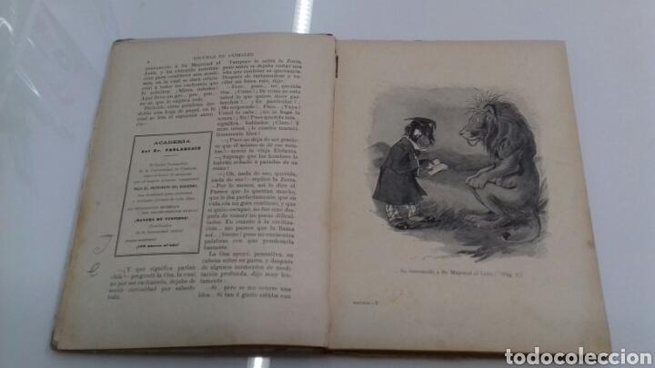 Libros antiguos: ESCUELA DE ANIMALES S.H. HAMER MAGNIFICAS ILUSTRACIONES H.B. NEILSON SOPENA EDITOR 1917 1° EDICION - Foto 6 - 104295432