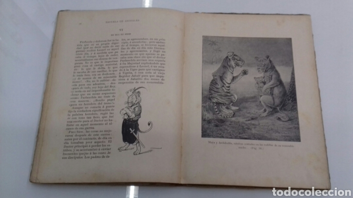 Libros antiguos: ESCUELA DE ANIMALES S.H. HAMER MAGNIFICAS ILUSTRACIONES H.B. NEILSON SOPENA EDITOR 1917 1° EDICION - Foto 11 - 104295432