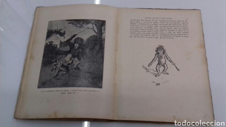 Libros antiguos: ESCUELA DE ANIMALES S.H. HAMER MAGNIFICAS ILUSTRACIONES H.B. NEILSON SOPENA EDITOR 1917 1° EDICION - Foto 12 - 104295432