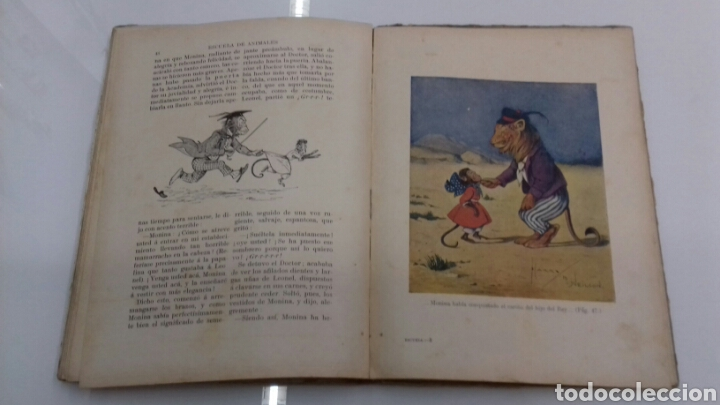 Libros antiguos: ESCUELA DE ANIMALES S.H. HAMER MAGNIFICAS ILUSTRACIONES H.B. NEILSON SOPENA EDITOR 1917 1° EDICION - Foto 13 - 104295432