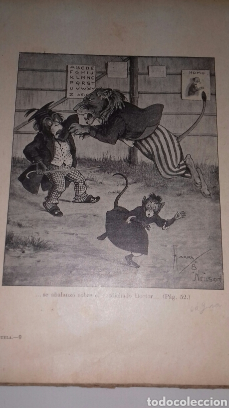 Libros antiguos: ESCUELA DE ANIMALES S.H. HAMER MAGNIFICAS ILUSTRACIONES H.B. NEILSON SOPENA EDITOR 1917 1° EDICION - Foto 14 - 104295432