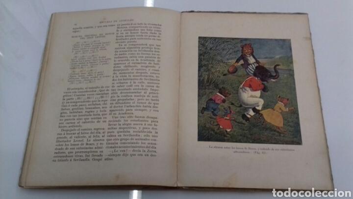 Libros antiguos: ESCUELA DE ANIMALES S.H. HAMER MAGNIFICAS ILUSTRACIONES H.B. NEILSON SOPENA EDITOR 1917 1° EDICION - Foto 16 - 104295432