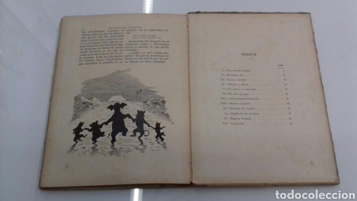 Libros antiguos: ESCUELA DE ANIMALES S.H. HAMER MAGNIFICAS ILUSTRACIONES H.B. NEILSON SOPENA EDITOR 1917 1° EDICION - Foto 19 - 104295432