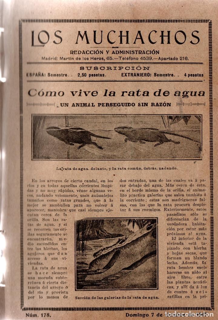 Libros antiguos: LOS MUCHACHOS. SEMANARIO INFANTIL. NÚM. 178. DOMINGO 7 DE OCTUBRE DE 1917. - Foto 2 - 111234311