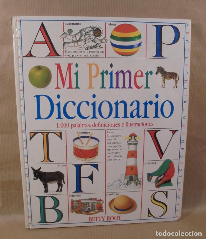 MI PRIMER DICCIONARIO DE BETTY ROOT (Libros Antiguos, Raros y Curiosos - Literatura Infantil y Juvenil - Cuentos)