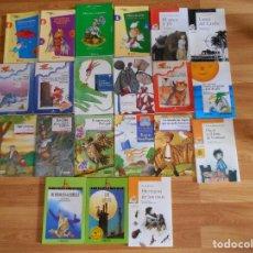 Libros antiguos: LOTE DE 21 LIBROS VARIADOS-ANAYA EVEREST BRUÑO ALA DELTA-TAPA FINA. Lote 121515015