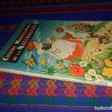 Libros antiguos: CUENTOS MARAVILLOSOS DE LA NATURALEZA, ILUSTRACIONES PILI BLASCO. Nº 15. MOLINO 1957. . Lote 129500851