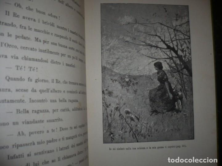 Libros antiguos: CERA UNA VOLTA FIABE LUIGI CAPUANA 1885 MILANO 12 CUENTOS 36 ILUSTRACIONES - Foto 6 - 132527402