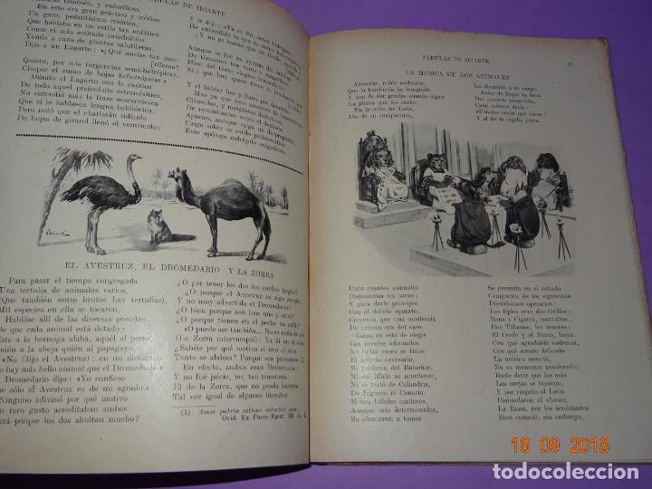 Libros antiguos: COMO VIVEN LOSFÁBULAS DE IRIARTE - 1ª Edición de 1934 Editorial Ramon Sopena BIBLIOTECA PARA NIÑOS - Foto 4 - 133684962