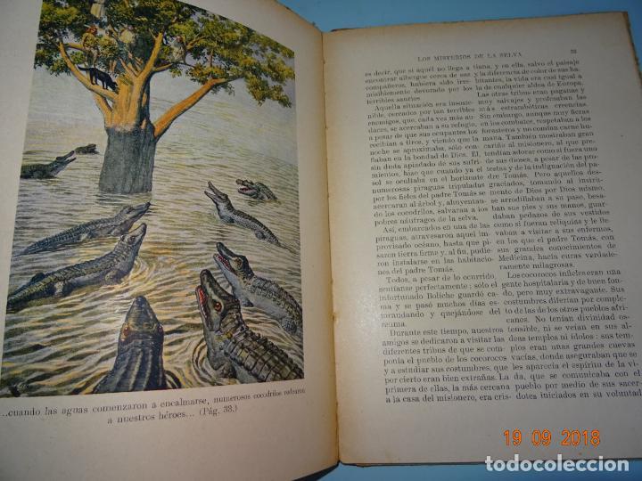 Libros antiguos: LOS MISTERIOS DE LA SELVA 1ª Edición de 1933 Editorial Ramon Sopena BIBLIOTECA PARA NIÑOS - Foto 2 - 133867886